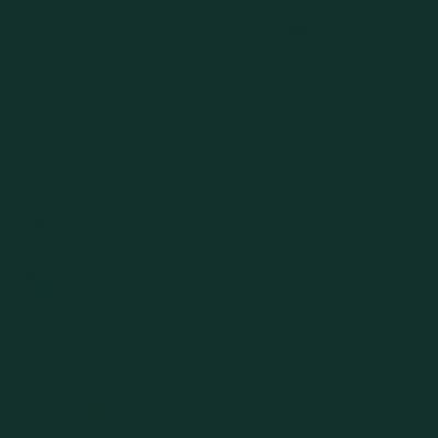 Artigo 181803 Cor03 - Verde Escuro Liso