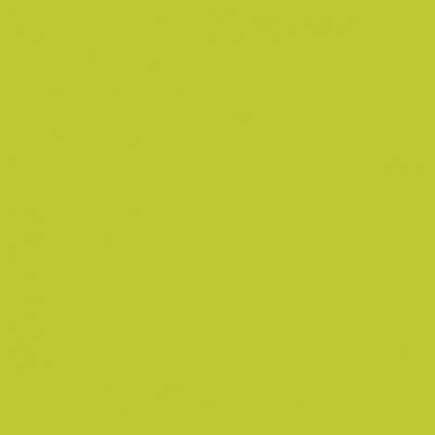 Artigo 12503 Cor03 - Verde Liso